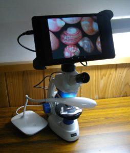 生物顕微鏡