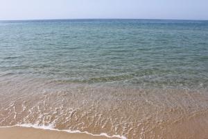 鳴き砂が最も良く鳴く砂浜
