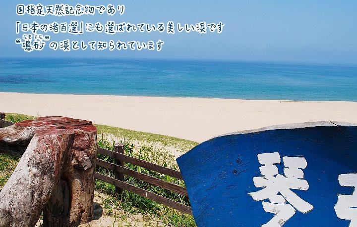 国指定天然記念物 琴引浜の鳴砂(なきすな)